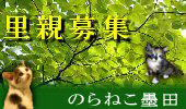 20061008-norasumi_170-100.jpg